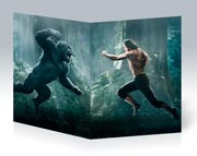 Купить тонкие школьные тетради Legend of Tarzan